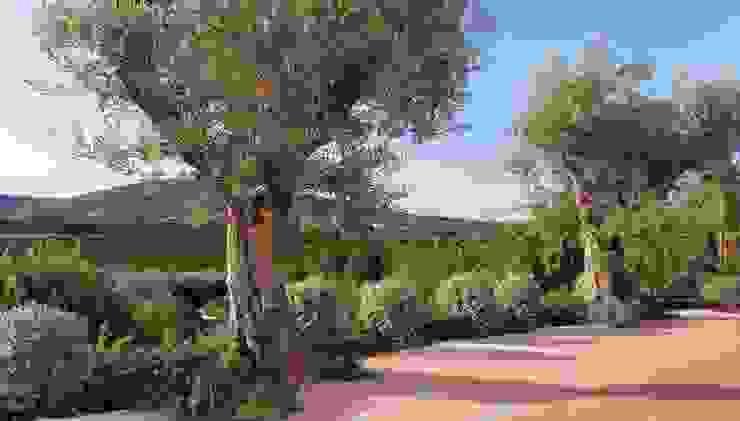 Jardines de estilo  por JARDIMGARVE, Mediterráneo