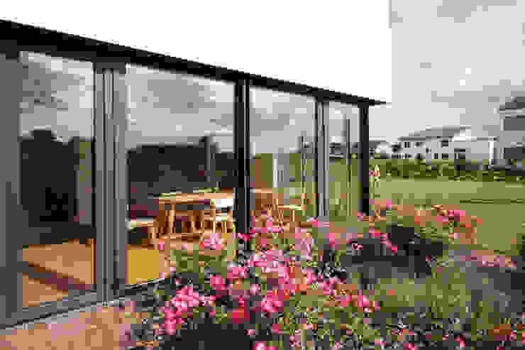 Eckfenster Rosenbeet ARCHITEKTEN BRÜNING REIN Moderne Fenster & Türen
