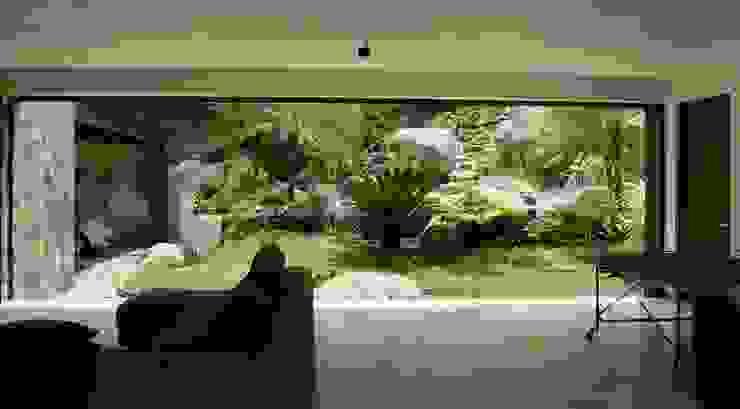 Modern Garden by BARRAGAN ARQUITECTOS Modern