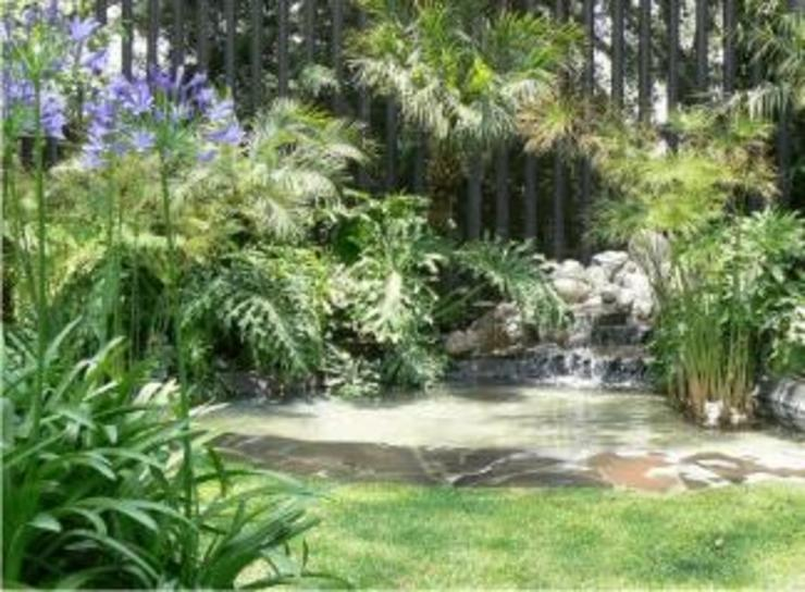 Classic style garden by BARRAGAN ARQUITECTOS Classic