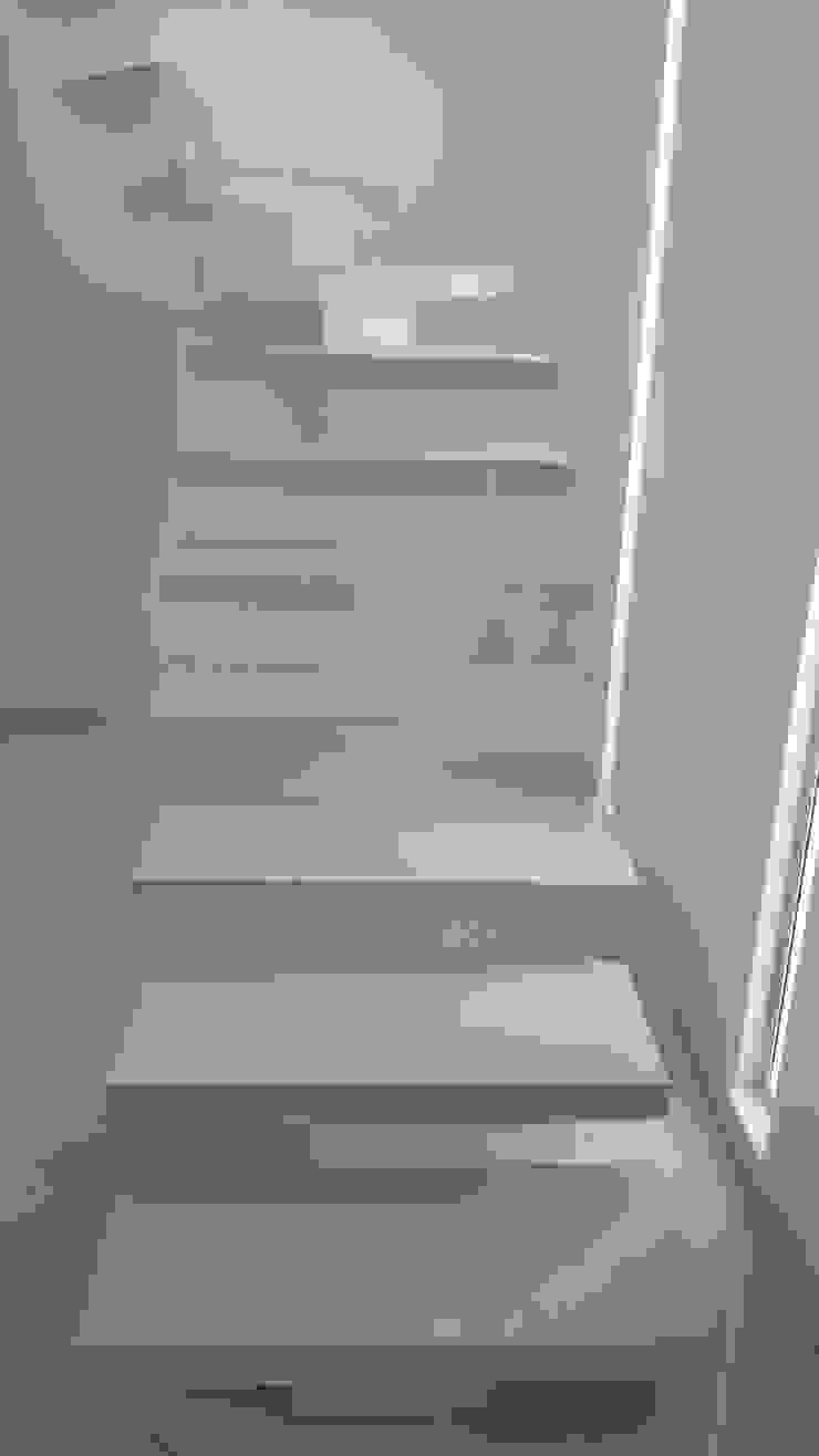 CASAS MODELIA. Pasillos, vestíbulos y escaleras de estilo moderno de CELIS & CELIS INGENIEROS CONSTRUCTORES S.A.S Moderno