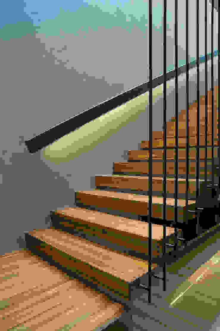 Couloir, entrée, escaliers tropicaux par Simple Projects Architecture Tropical Contreplaqué
