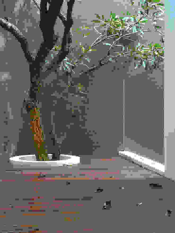 Balcon, Veranda & Terrasse tropicaux par Simple Projects Architecture Tropical Bois Effet bois