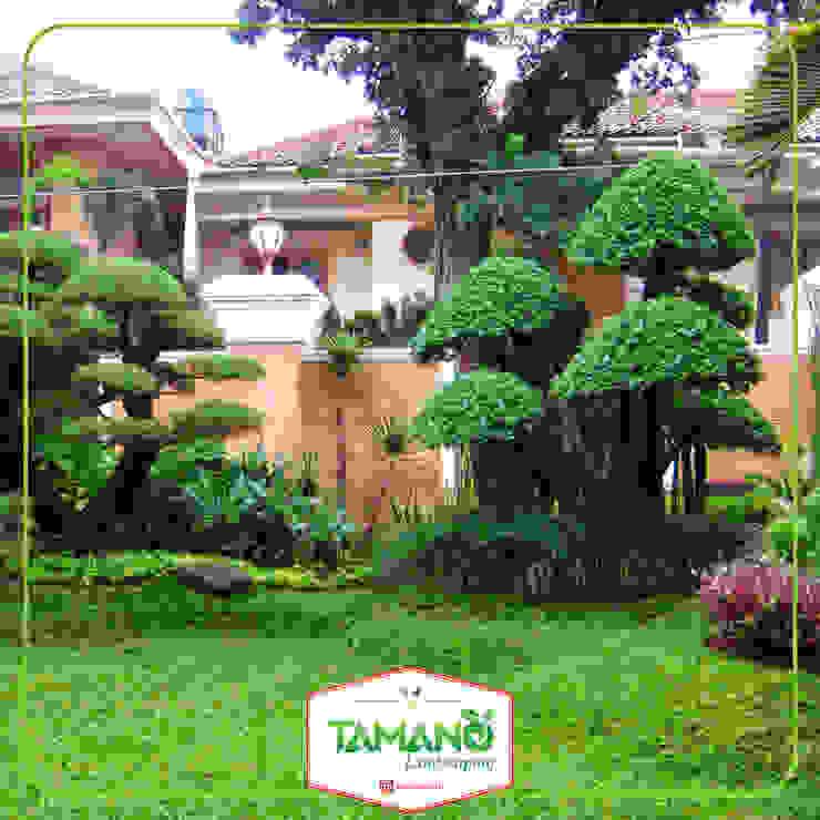Taman Halaman Rumah tamano Bangunan Kantor Tropis Green