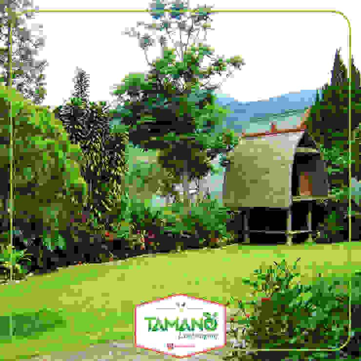 Taman Belakang Halaman Rumah tamano Hotel Tropis