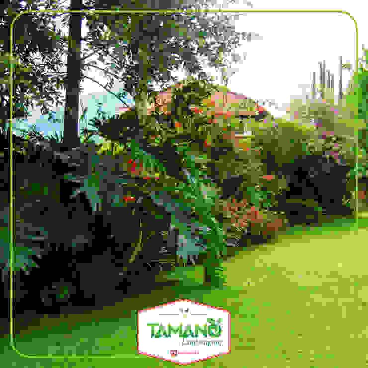 Taman Halaman Rumah tamano Hotel Tropis
