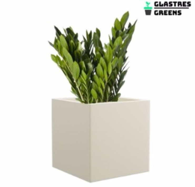 Asian style garden by Glastres Greens Asian