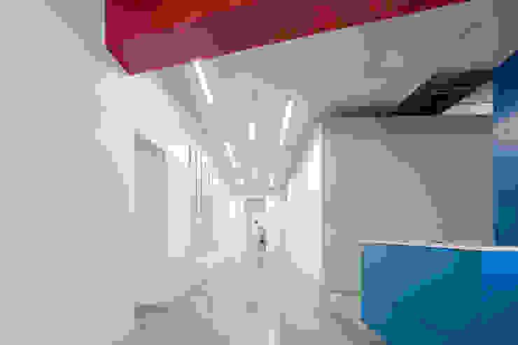 Tp Puebla Pasillos, vestíbulos y escaleras modernos de IAARQ (Ibarra Aragón Arquitectura SC) Moderno