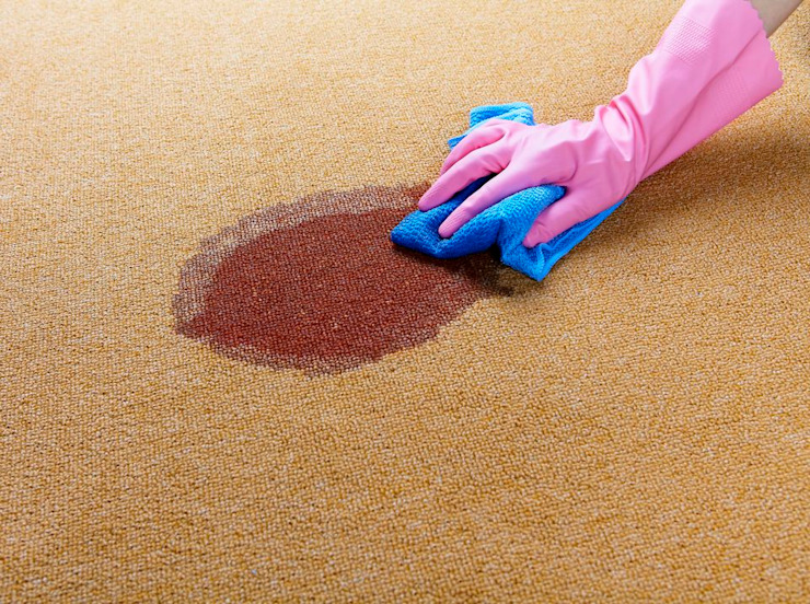 Efficient Stain Removal โดย Cleaning Services Bangkok