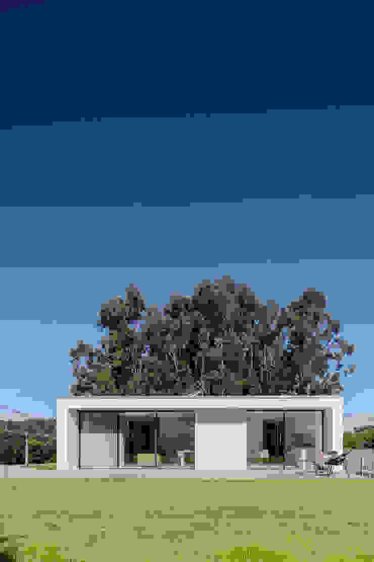Maisons minimalistes par Raulino Silva Arquitecto Unip. Lda Minimaliste Bois Effet bois