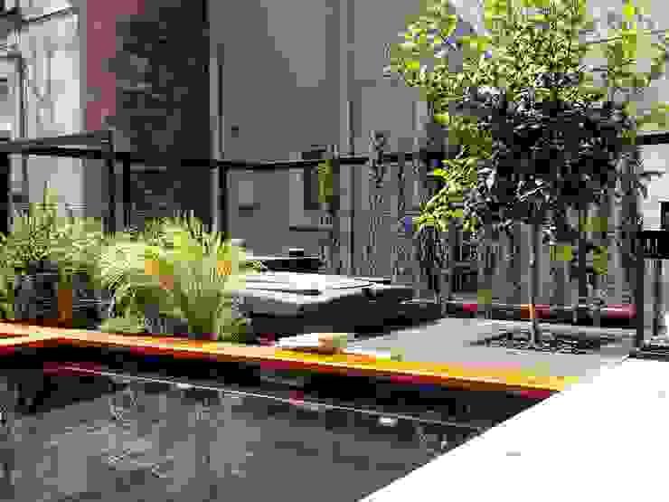 TERRAZA PARTICULAR CON PISCINA  - BARCELONA: Jardines de estilo  de BURESINNOVA S.A., Mediterráneo
