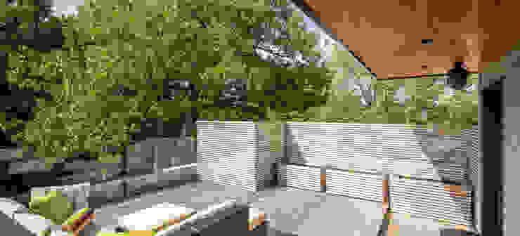 Avenue Road Residence Modern terrace by Flynn Architect Modern