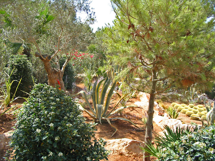 guba + sgard Landschaftsarchitekten Jardin méditerranéen