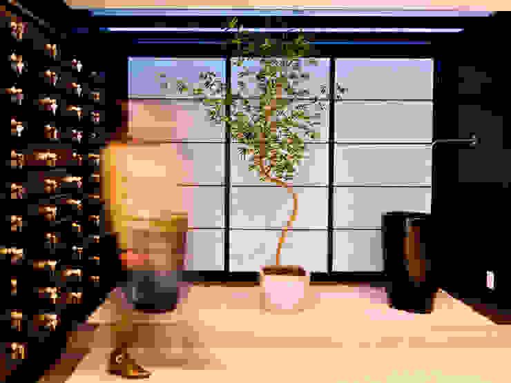 Pasillos, vestíbulos y escaleras de estilo moderno de SZ ARQUITETURA Moderno