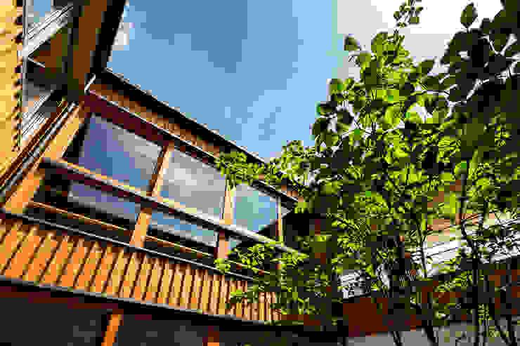 中山大輔建築設計事務所/Nakayama Architects Wooden windows