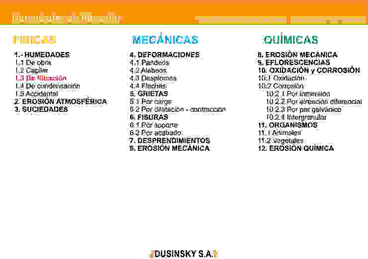 CLASIFICACION DE LESIONES de DUSINSKY S.A.