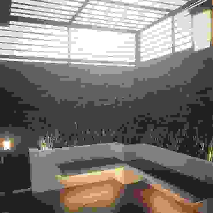 Roof Garden Taman Tropis Oleh Lighthouse Architect Indonesia Tropis