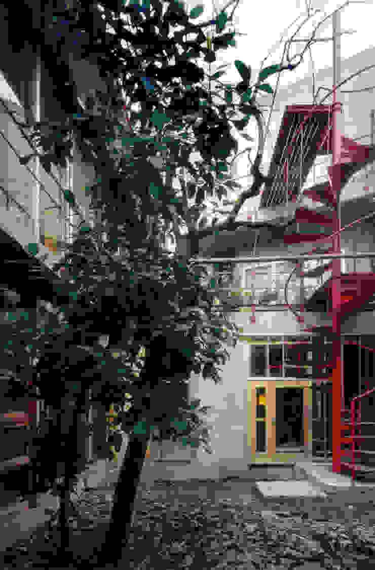 Modern style gardens by 株式会社 ギルド・デザイン一級建築士事務所 Modern Concrete