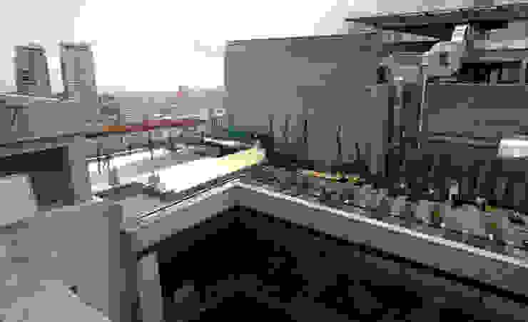 Azotea Trabajadores contraloría general de la república Landscape_lab Balcones y terrazas modernos Madera