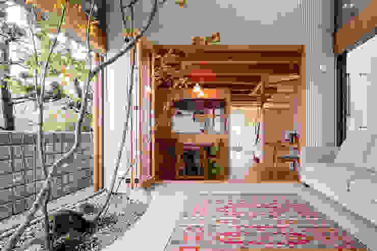 melt モダンスタイルの 温室 の 建築設計事務所SAI工房 モダン 木 木目調