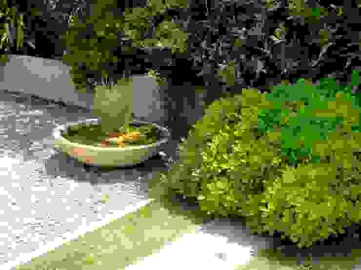 Proyecto de Paisajismo Familia Araya - Lo Barnechea, Santiago-Chile Jardines de estilo moderno de Aliwen Paisajismo Moderno