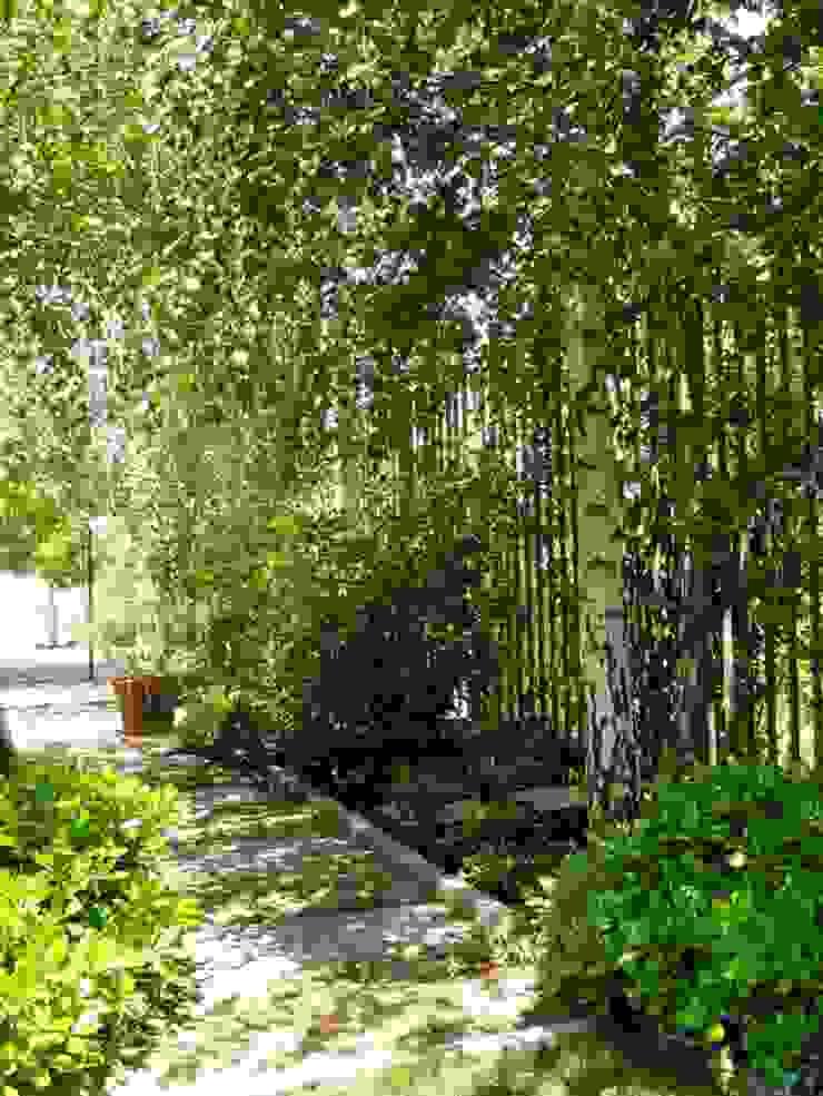 Proyecto de Paisajismo Familia Araya – Lo Barnechea, Santiago-Chile Jardines de estilo moderno de Aliwen Paisajismo Moderno