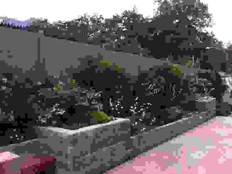 Aliwen Paisajismo Modern Garden