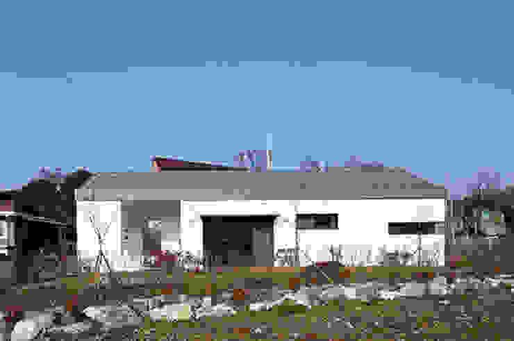 화성 봉구네 모던스타일 주택 by TODOT 모던