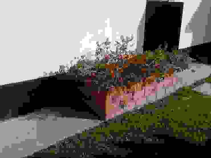 Jardines de estilo rural de homify Rural