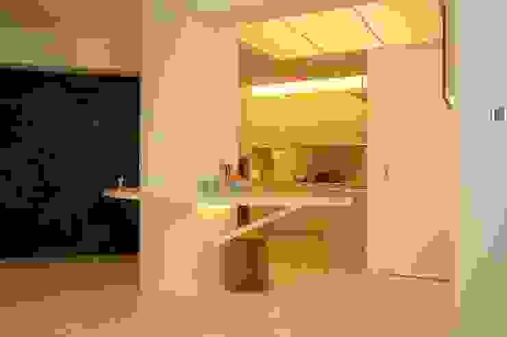 Park Towers Modern kitchen by Clifton Leung Design Workshop Modern