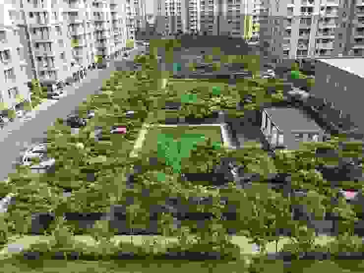 Central landscaped area Modern garden by NMP Design Modern
