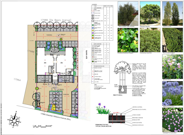 office landscaping plan for council approval by Lemontree Landscape architecture and Design