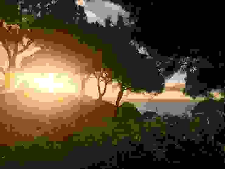 Pine Cliffs por Ecossistemas Minimalista
