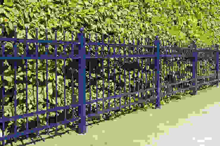 Nordzaun Giardino anteriore Ferro / Acciaio Blu