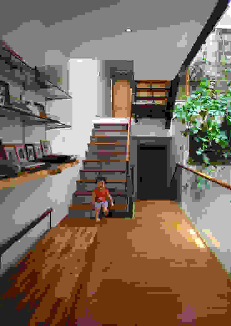 Cầu thang có dạng tấm gỗ thoáng. Hành lang, sảnh & cầu thang phong cách châu Á bởi Công ty TNHH TK XD Song Phát Châu Á Đồng / Đồng / Đồng thau