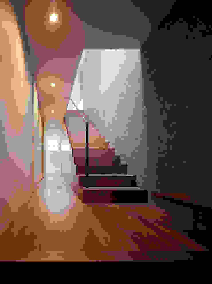 TY 光が降り注ぐテラスのある家 モダンスタイルの 玄関&廊下&階段 の 山縣洋建築設計事務所 モダン