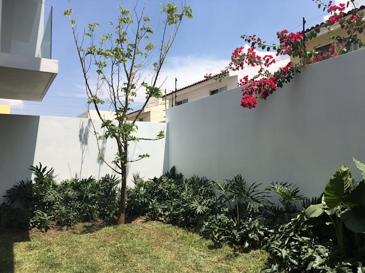 jardín posterior de Verde Lavanda Moderno Madera Acabado en madera