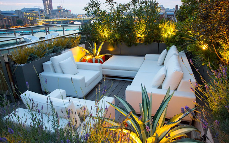 Roof terrace planting design ideas by MyLandscapes Garden Design Modern