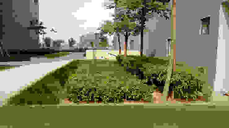 different planting patterns Modern garden by NMP Design Modern