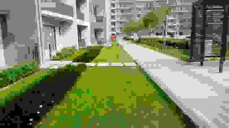 paving patterns Modern garden by NMP Design Modern