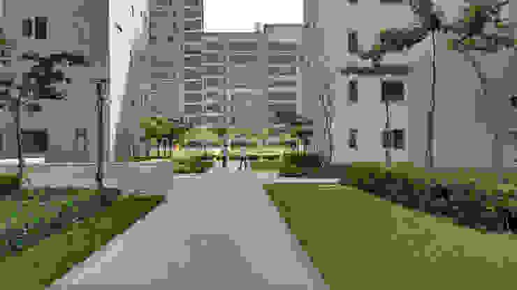 pavement Modern garden by NMP Design Modern