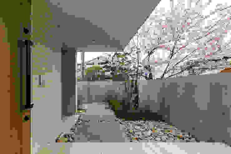 桜と暮らす家 モダンスタイルの 玄関&廊下&階段 の Kenji Yanagawa Architect and Associates モダン コンクリート