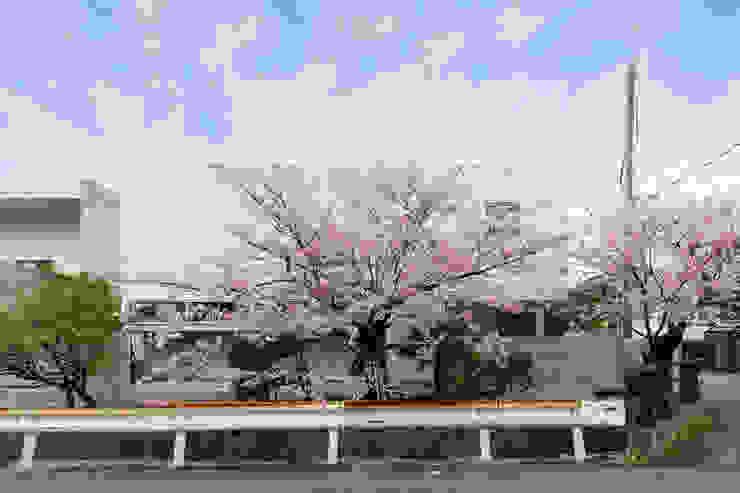 桜と暮らす家 モダンな 家 の Kenji Yanagawa Architect and Associates モダン 木 木目調