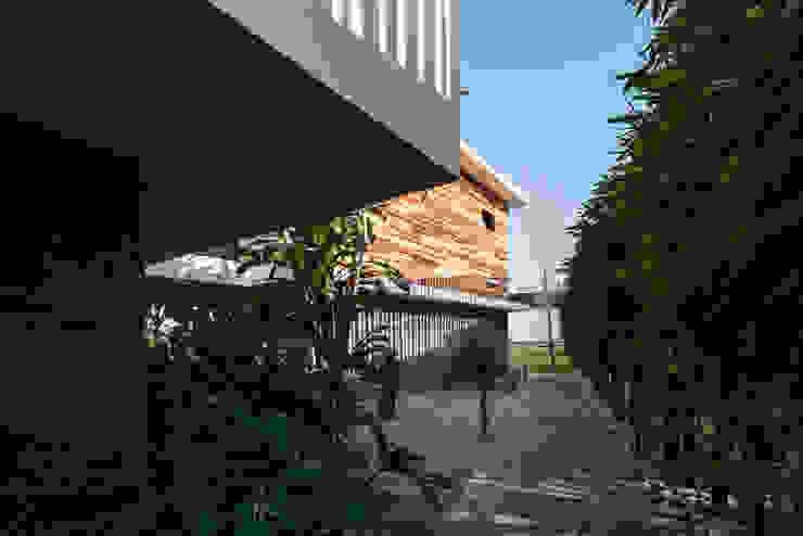 Minimalist style garden by Dionne Arquitectos Minimalist Wood Wood effect