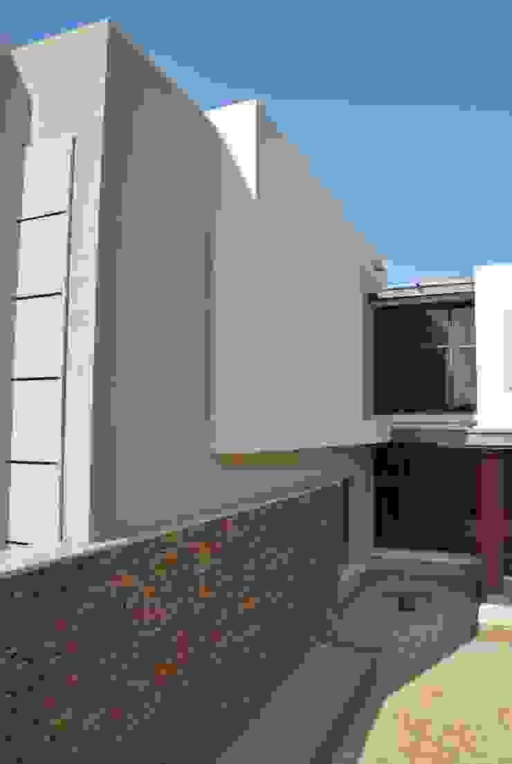 House N Minimalist house by ANTONIO DE FRANCA HOME DESIGNS Minimalist