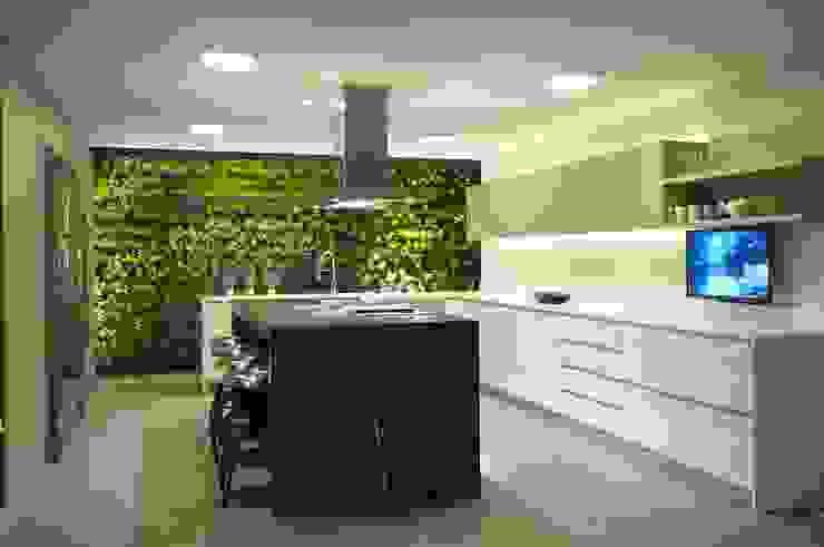 Cocinas de estilo  de Hernandez Silva Arquitectos, Moderno