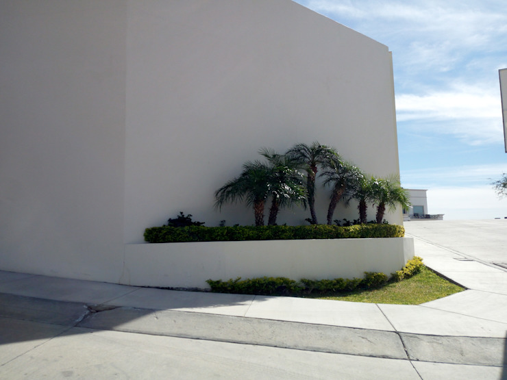 Acrópolis Arquitectura Modern style gardens