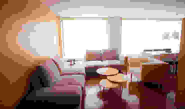 modern  door AMR estudio, Modern