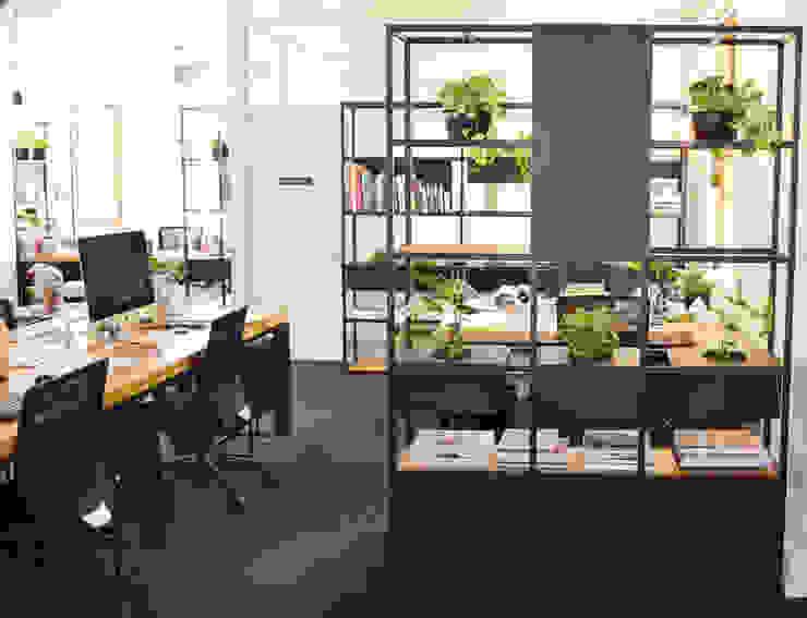Office Interior renovation: minimalist  by ILTORO DESIGN, Minimalist