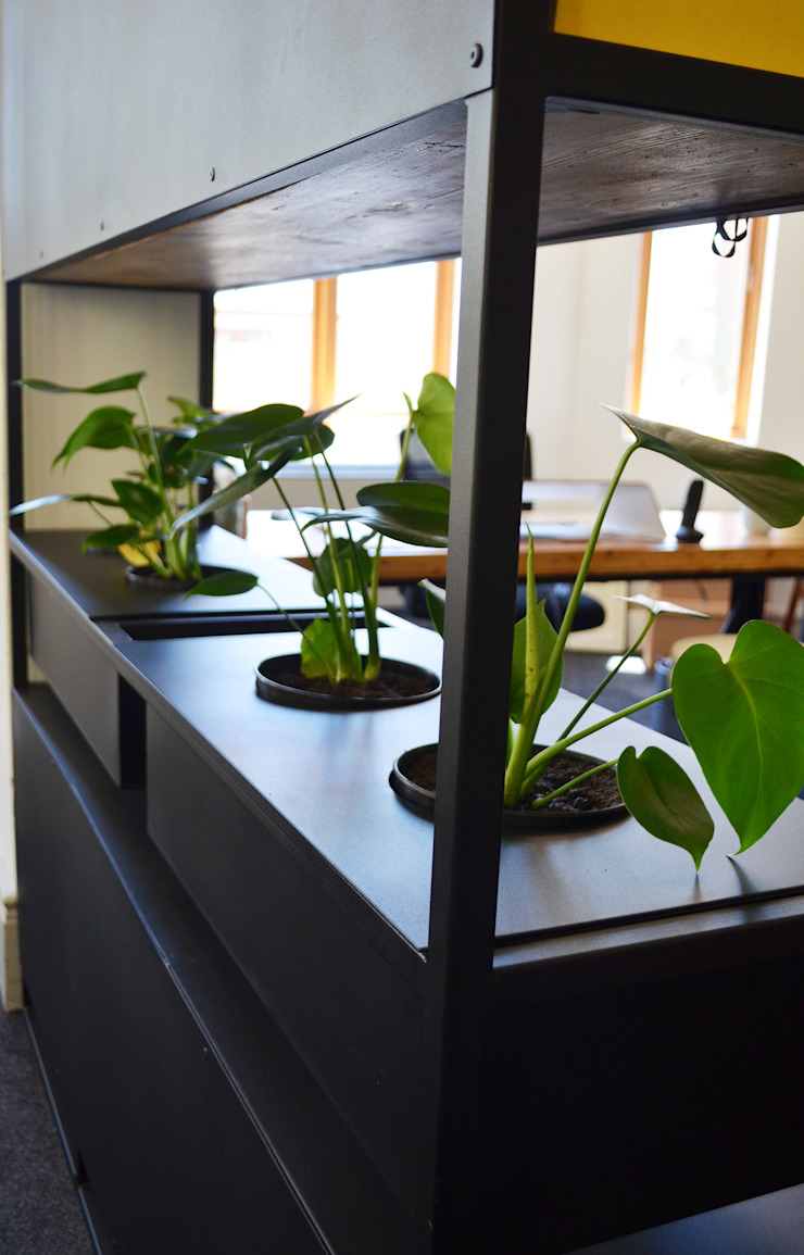 Office Interior renovation by ILTORO DESIGN Minimalist